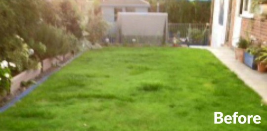 Driscolls-namgrass-vision-artificial-lawn-hayling-island-before