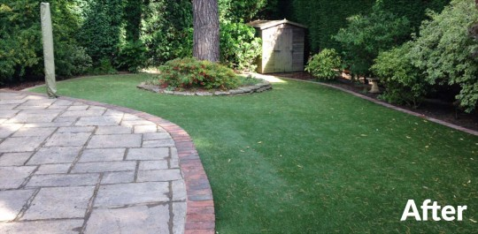 Wrights-artificial-lawn-fleet-after
