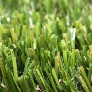 green-eclipse-artificial-grass-1-300x300 Free Samples